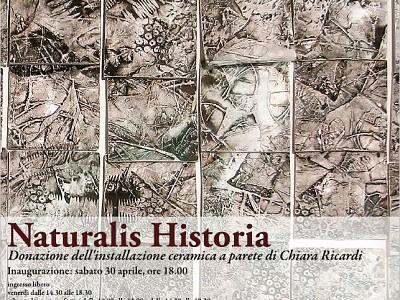 NATURALIS HISTORIA DI CHIARA RICARDI